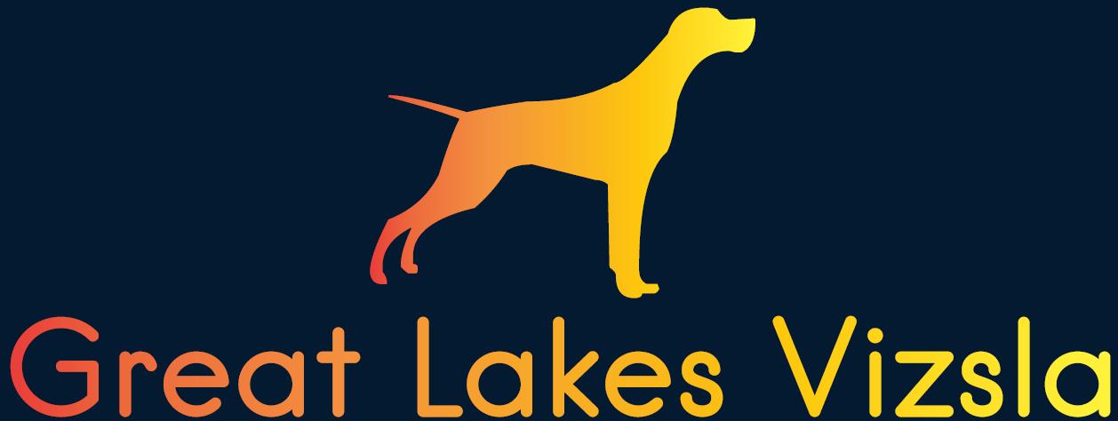 Great Lakes Vizsla